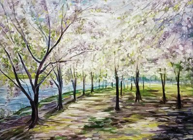 Spring in a Park